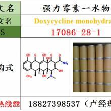 强力霉素一水物原料17086-28-1