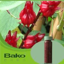 石狮供应玫瑰茄提取物原料,中老年养生营养品玫瑰茄提取物 巴科