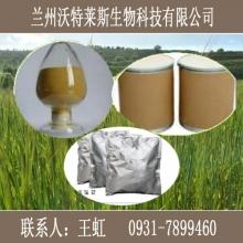 玛卡提取物 玛卡 高纯度玛卡生物碱50%